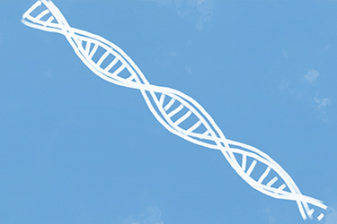 Illustration of a DNA strand