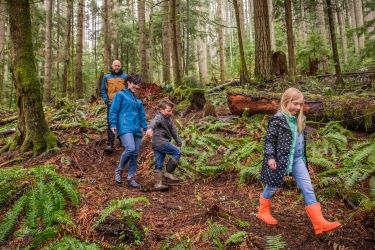 Photo of employee and family walking in woods