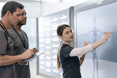 Doctors interacting with Surface Hub