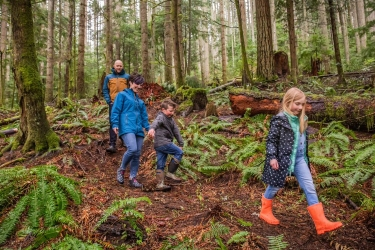 Photo of family walking in woods